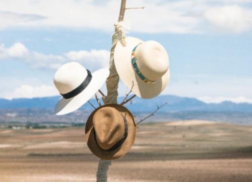 sombreros de paja verano