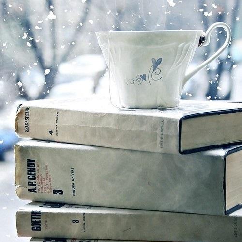 Sumérgete en las páginas de estos libros con grandes historias que contar