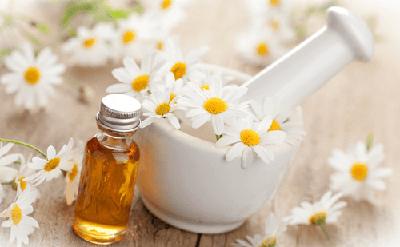 cosmetica natural belleza ecologica bio