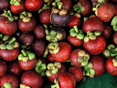 magostino fruta alimentacion salud belleza