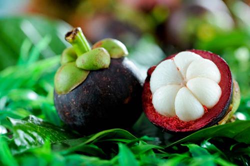 Descubre el mangostino, la reina de las frutas