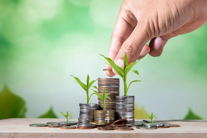 ¿Qué son los préstamos rápidos y de qué tipos son?